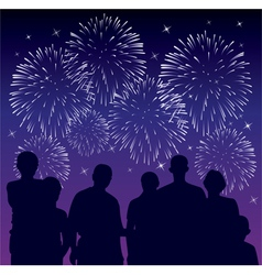 people watching fireworks vector image vector image