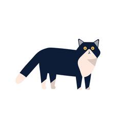 Adorable mammal domestic animal flat vector