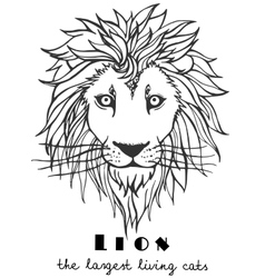 Black and white decorative hand drawn lion vector image