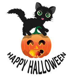 black cat and pumpkin for halloween3 vector image