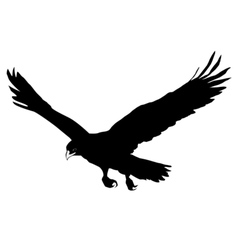 Black silhouette of golden eagle vector