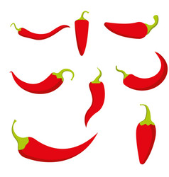 chili pepper isolated on white hot red chile vector image