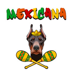 dobermann with maracas wearing in sombrero vector image