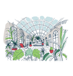 Freehand sketch of interior of greenhouse full vector