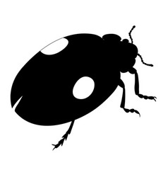 ladybird silhouette isolated on white background vector image