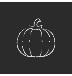 Pumpkin icon drawn in chalk vector image