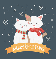 white cats with scarf snowflakes celebration merry vector image