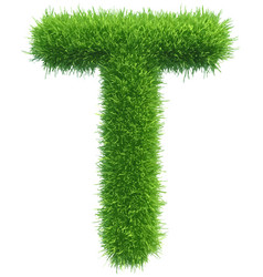 capital letter t from grass on white vector image vector image