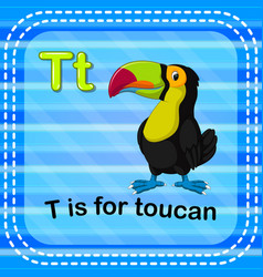flashcard letter t is for toucan vector image