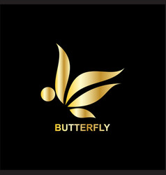 gold butterfly business logo vector image