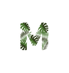Logo letter m tropical leaves vector