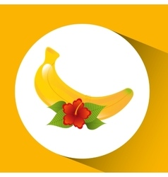 Red flower and tropical banana fruit design vector