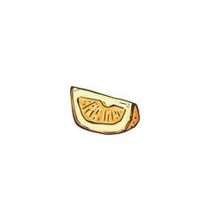 slice lemon drawing isolated on white vector image