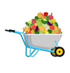 Wheelbarrow and vegetables big harvest in garden vector