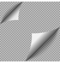 Paper page vector image