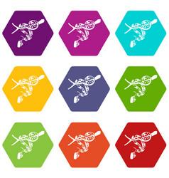 Ball python icons set 9 vector