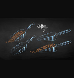 collection metal coffee scoop vector image