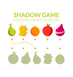 find correct shadow educational game for kids vector image