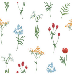 Floral seamless pattern with wild blooming flowers vector