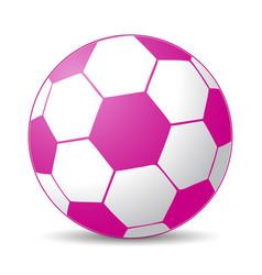 pink soccer ball vector image