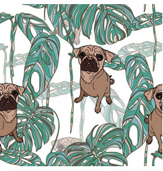 pug and tropical leaves vector image