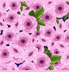 sakura pink floral background vector image