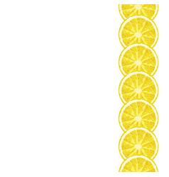 Seamless decorative border of lemon slice citrus vector