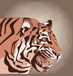 tiger drawing over brown background vector image