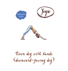 healthy yoga stretching woman vector image