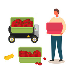 a man holding an empty box in hands fresh ripe vector image