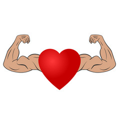 Heart with muscular arms vector
