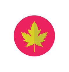 maple green leaf - concept colored icon in flat vector image