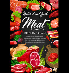 meat beef and pork sausages herbs and spices vector image