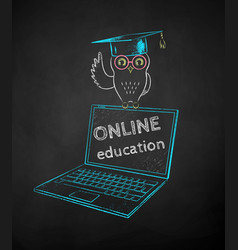 owl in mortarboard sitting on laptop vector image