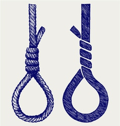 Rope noose with hangman knot vector image