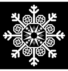 Single White Snowflake vector image