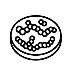 Streptococcus bacteria line icon vector