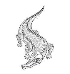 Hand drawn zentangled Crocodile for adult coloring vector image