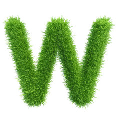 capital letter w from grass on white vector image vector image