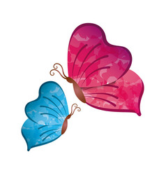 Butterflies icon image vector
