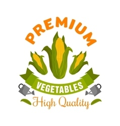 Corn vegetable sign with fresh maize cobs vector