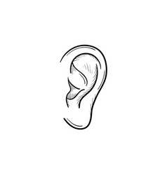 human ear hand drawn outline doodle icon vector image