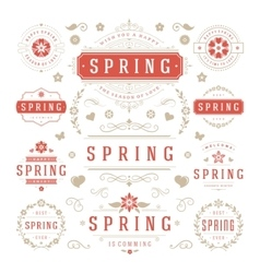 Spring Typographic Design Set Retro and Vintage vector