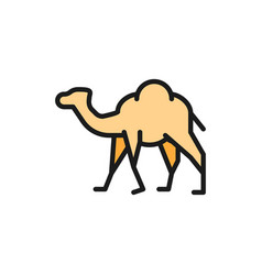 Camel caravan desert animal flat color vector