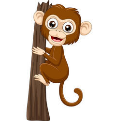 cartoon bamonkey climbing tree branch vector image