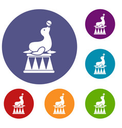 Circus seal with a ball icons set vector