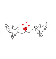 dove pigeon couple with heart love concept vector image