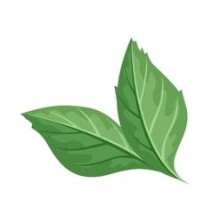 Green Leaf in Flat Design vector