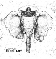 Hipster animal elephant captains cap and pipe vector