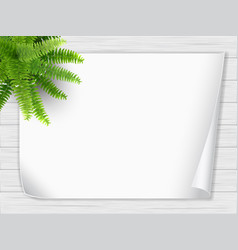 Houseplant fern paper wooden desk vector